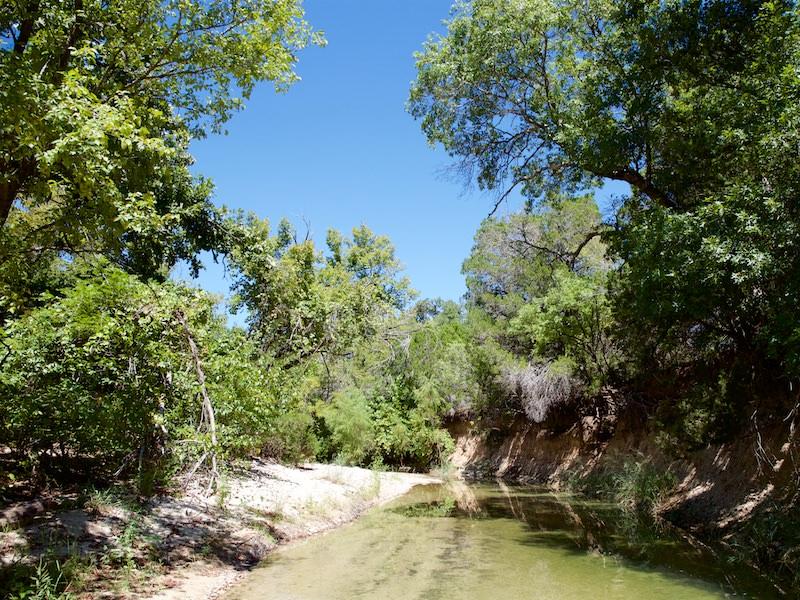 Photo of Hamm Creek Nature Area