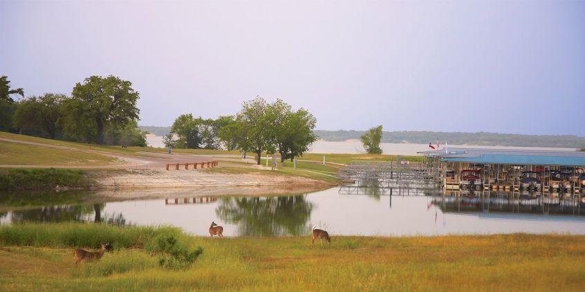 Photo of the White Bluff Marina