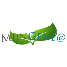 mijn-genea logo new