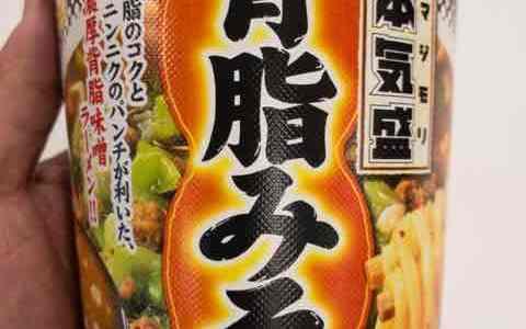 マルちゃん本気盛(マジモリ)背脂みそはスープの濃さとコクがいい!