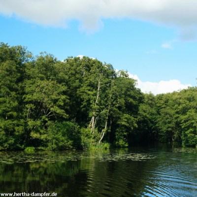 Das Tor zur Wildnis - Einfahrt in den Waldkanal