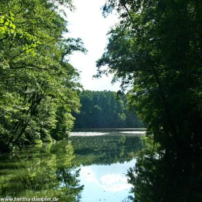 Ausfahrt aus dem Waldkanal Stolpe