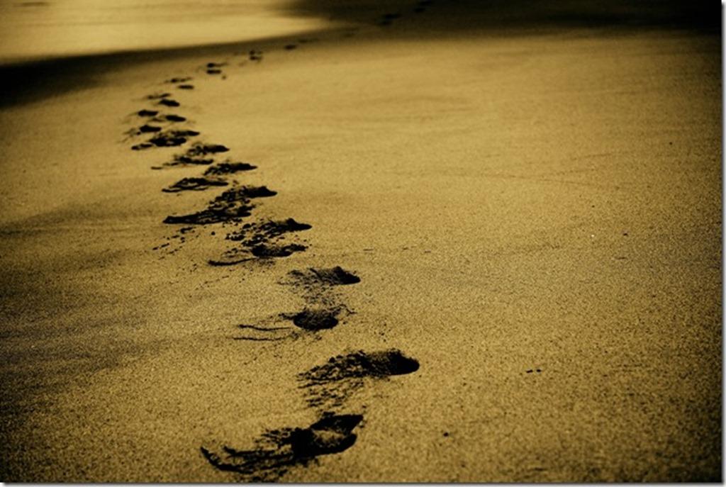 un chemin
