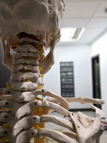 Ostéopathie et psychologie