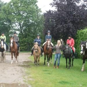 Ponykampen 2011