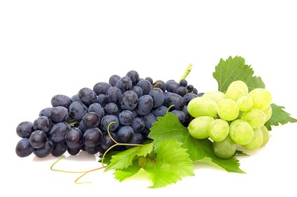 Die Trauben in der Küche: 4 Rezepte