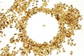 Reis: Geschichte, Ernährungs-Analyse Krebs Prävention und mehr