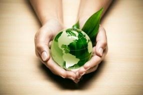 Bio-Produkte: Gesundheit und Schönheit für sie und die Umwelt