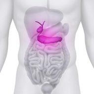 Bauchspeicheldrüse und Chinesische Medizin