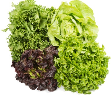 Kopfsalat Rezepte,  mehr als nur Salat
