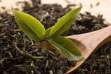 Ökologischer Landbau und nachhaltige Entwicklung