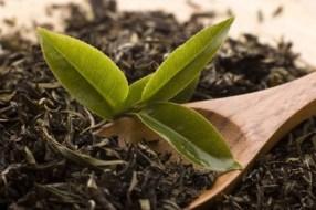 Pu-erh roter Tee ... Zubereitung, Herkunft und Geschichte