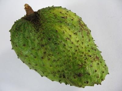 Rezepte mit Guanabana (Graviola)