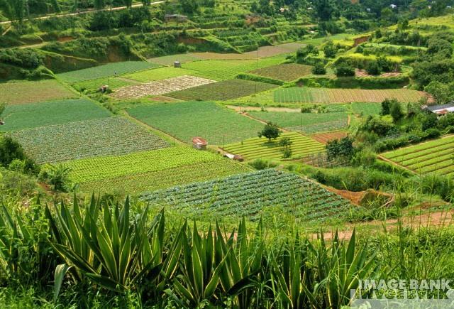 Andalusien fördert die ökologische Landwirtschaft