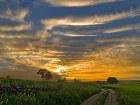 Ökologischer Landbau in La Rioja