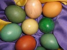 Was Pero Alles trocknet pflanzliche Osterfarben