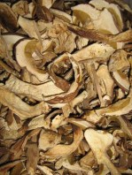 Steinpilze getrocknet lose Gastro