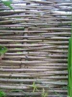 Kostenlos Garten gestalten DIY Flechten - Der einfache Weg Flechtausschnitt