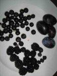 Früchte verarbeiten zu leckeren Süssigkeiten. Einfache Methode. dunkle Fruechte