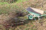 Heizen mit Biomasse - DIY mit wenig Geld Heizung bauen (Teil 1/4) Buendel warten