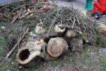Heizen mit Biomasse - DIY mit wenig Geld Heizung bauen (Teil 1/4) grobes haendisch zerkleinern