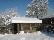 Wintereindrücke Permakultur Garten im Schnee, 3in1 mit Schnee
