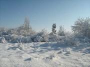Wintereindrücke Permakultur Garten im Schnee, Horizont im Schnee