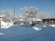 Wintereindrücke Permakultur Garten im Schnee, Wintertag am Ende