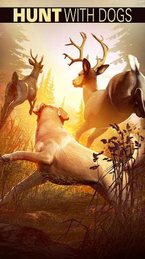 DEER HUNTER 2018 cheathackgameplayapk modresources generator 3