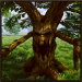 Download Treant Simulator 1.0 APK, APK MOD, Treant Simulator Cheat