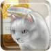 Free Download Talking Cute Cat  APK, APK MOD, Talking Cute Cat Cheat