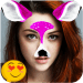 Free Download Face Stickers Photo Editor  APK, APK MOD, Face Stickers Photo Editor Cheat
