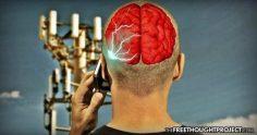 5G dangers wifi