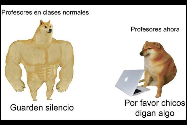 Los 10 Mejores Memes Del Perro De Antes Y Ahora De10