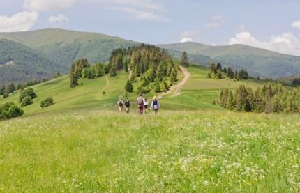 iStock-Carpathian-Mountains-web