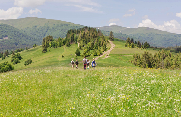 iStock-Carpathian-Mountains-web
