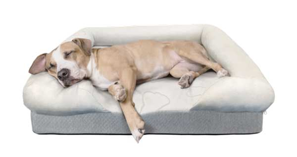 Puffy Dog Bed
