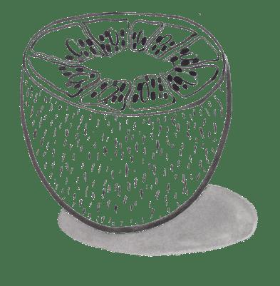 Kiwi Ink