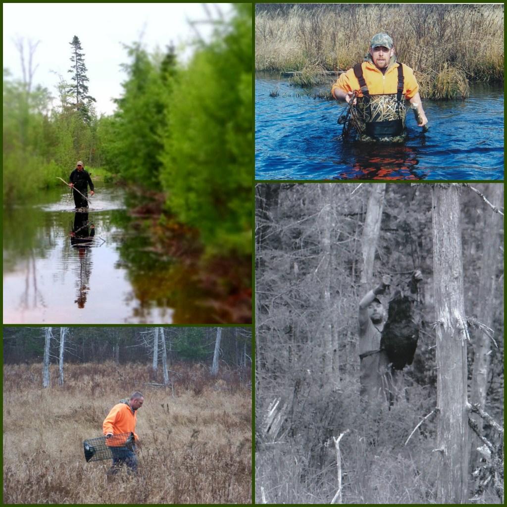 Mike setting beaver traps