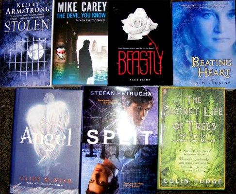 book haul 2010