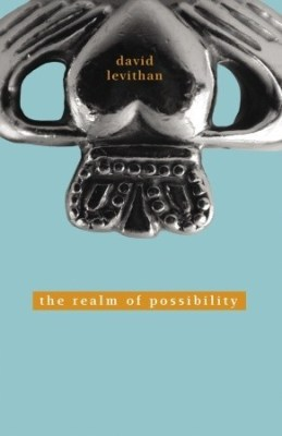 Review: The Realm of Possibility by David Levithan