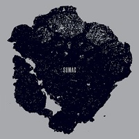 sumac-whatonebecomes