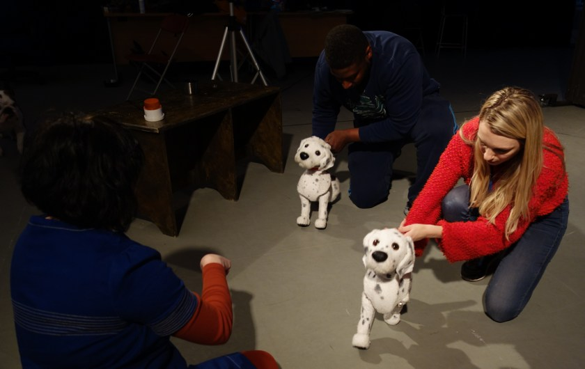the dog is a puppet ( a dalmation) trying to get to know Bubble, in picture is women in red holding puppet.