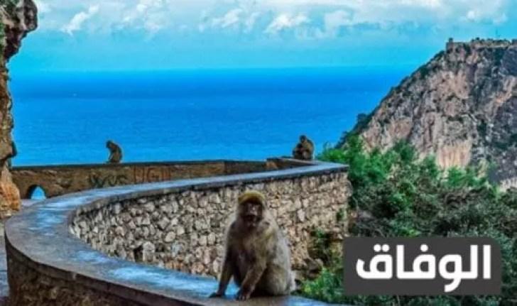 مواقع المحميات الطبيعية في الجزائر على الخريطة