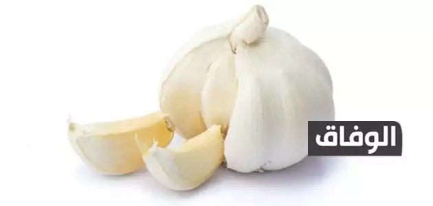 علاج ألم الضرس بالثوم
