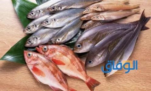 تفسير حلم أكل السمك في المنام للبنت العزباء