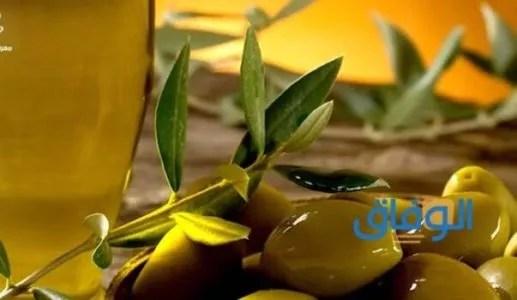 كيفية استخدام زيت الزيتون لعلاج خشونة الركبة