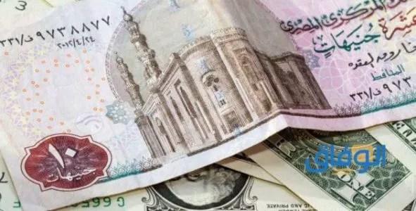 المؤسسة العربية لدعم وتطوير المشاريع والأفكار