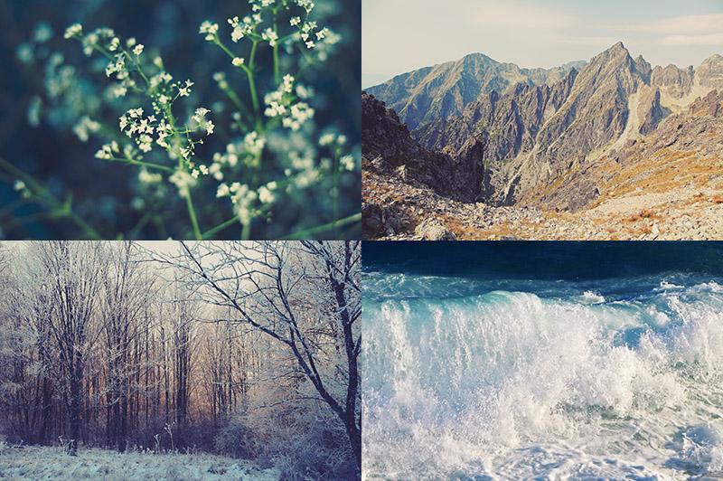 6 Free Nature Photos
