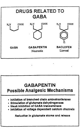 gabapentinanalgesicmechanism
